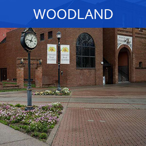 Woodland Homes and Condos for Sale