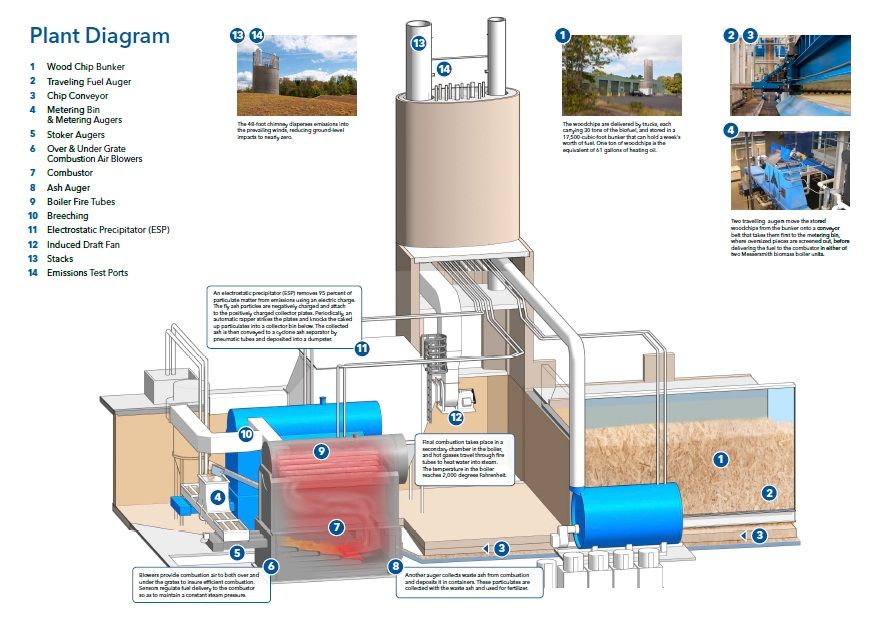 Beautiful Biomass Power Plant Diagram Firedamaged Trees To Be Recycled Decorating