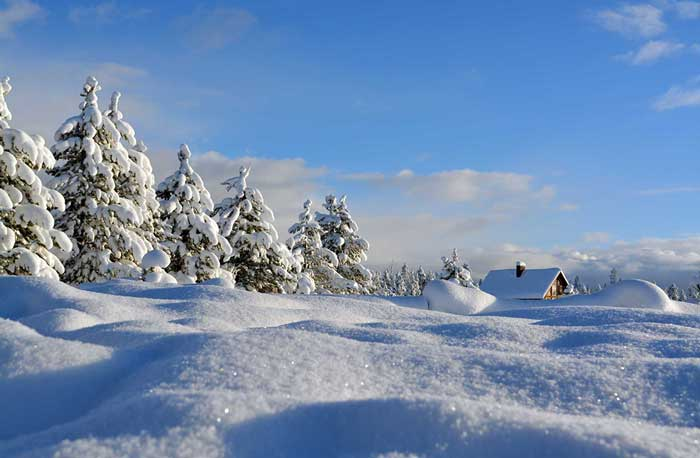 Winter scene with cabin in Southeast Idaho