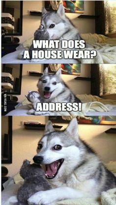 house jokes