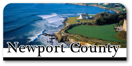 Homes for sale in Newport County