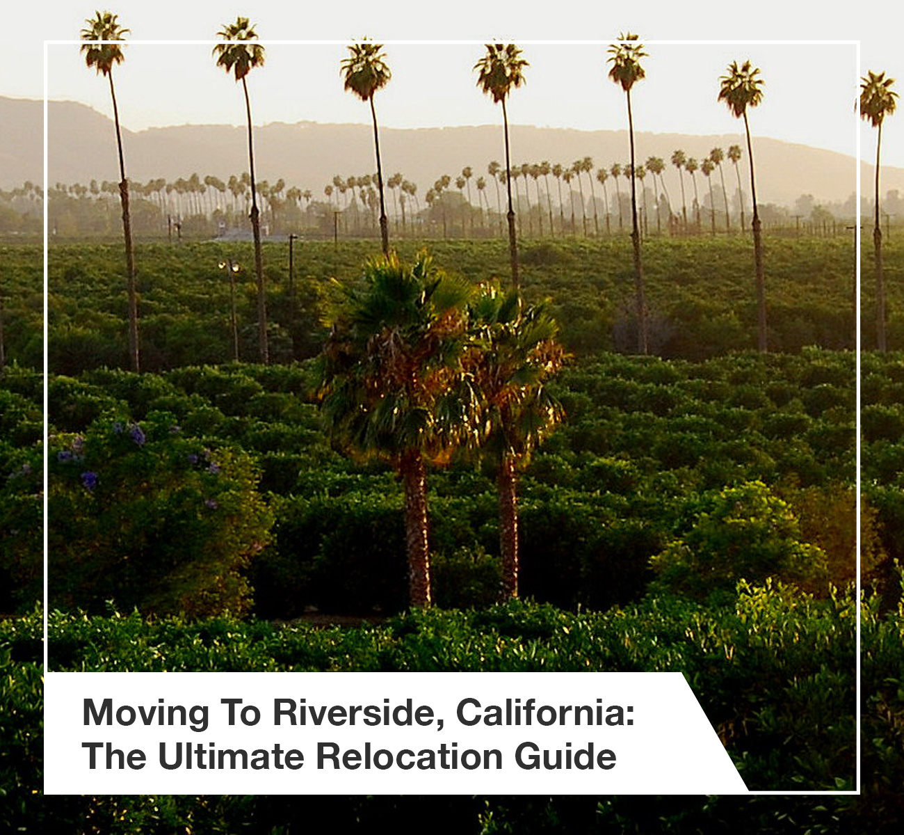 Moving To & Living In Riverside, CA