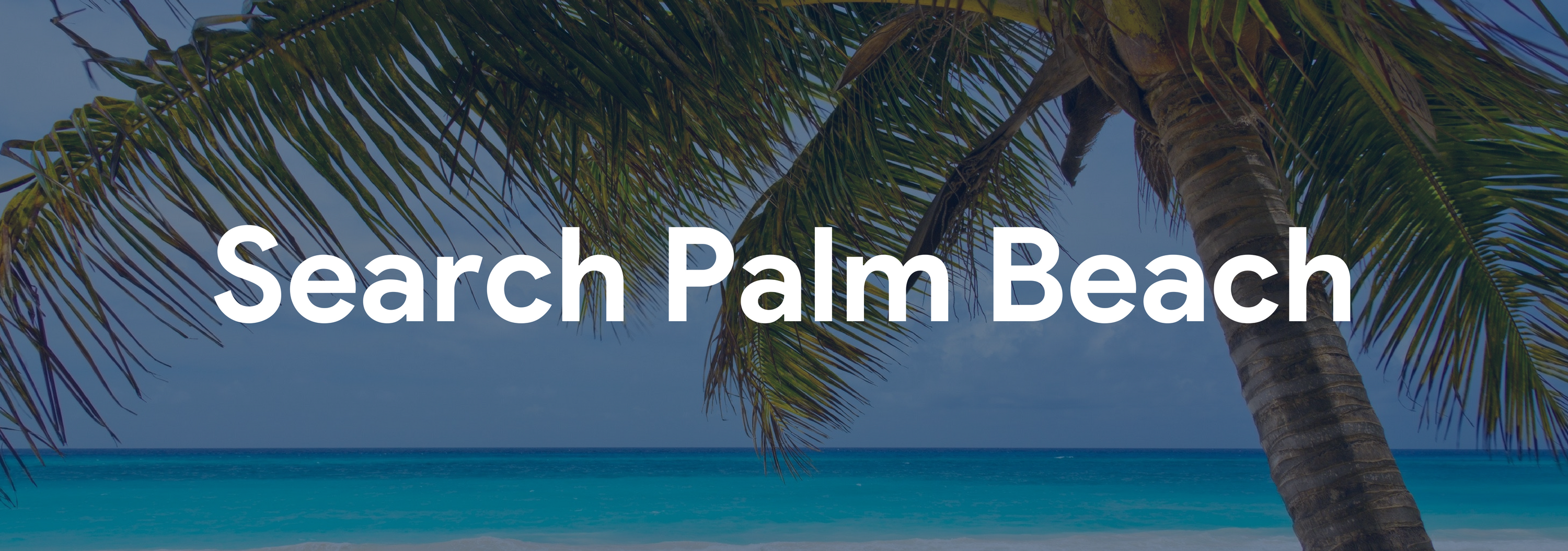 Search Palm Beach