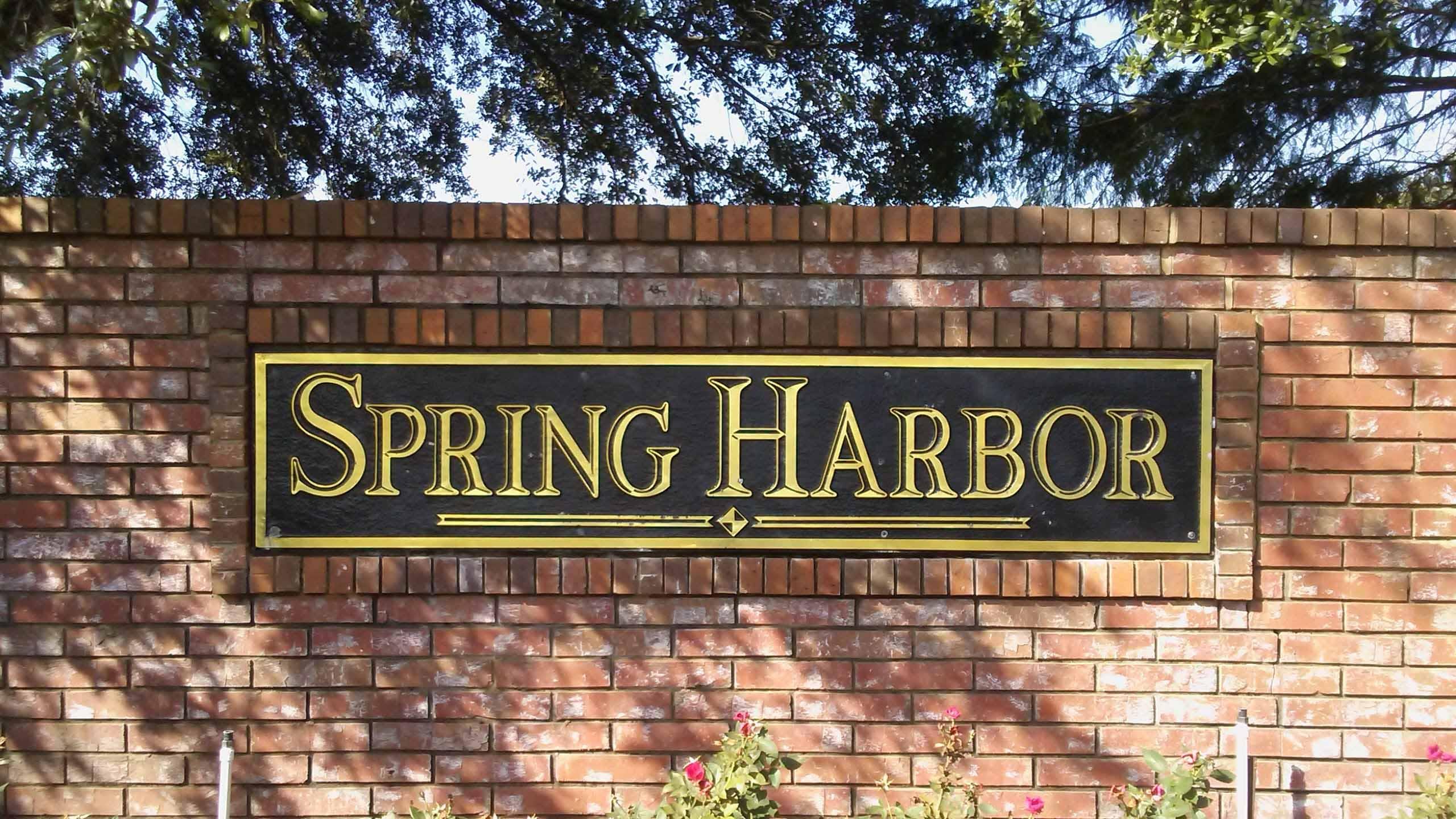 Spring Harbor, Apopka, Florida 32712