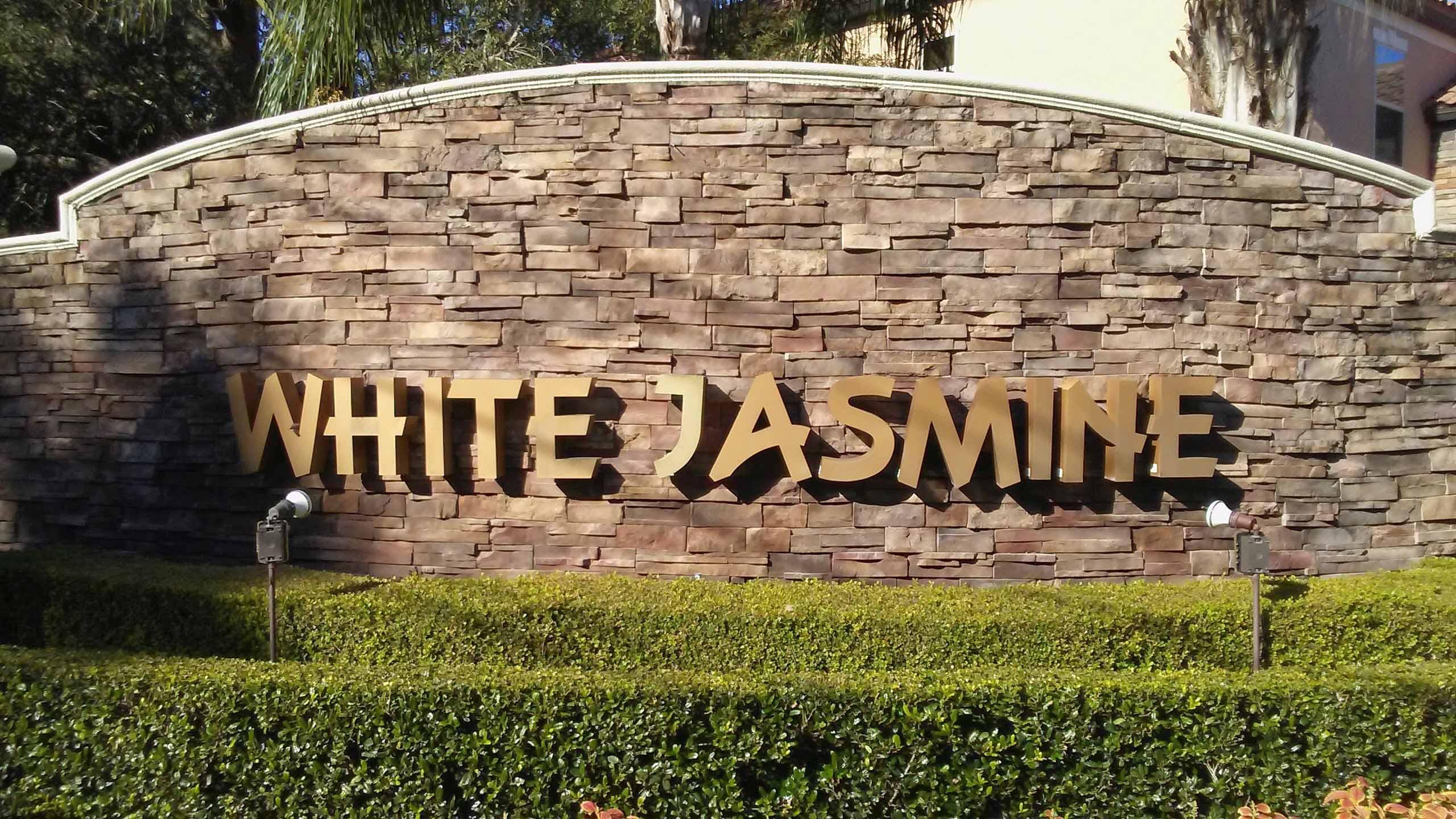 White Jasmine, Apopka, Florida 32712