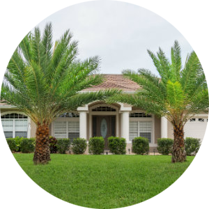 Palmetto Ridge Homes for Sale
