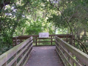 The Houston Arboretum and Nature Center is one of Houston's Best Kept Secrets