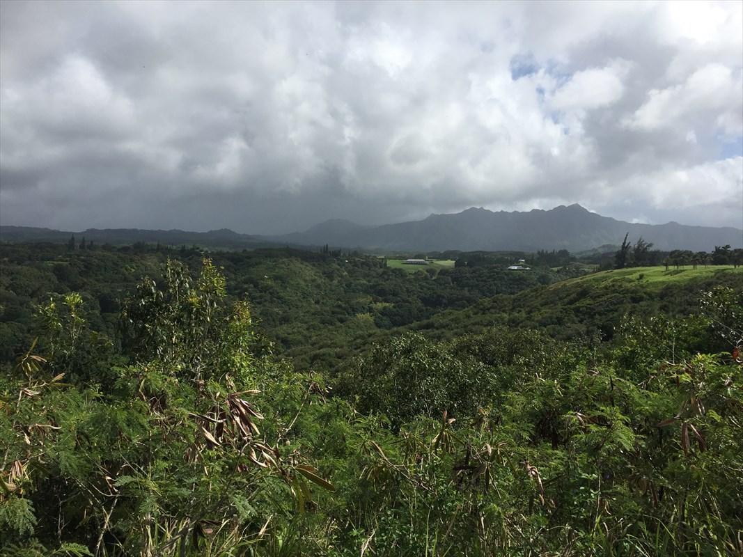 4170-K Wailapa Rd, Kilauea