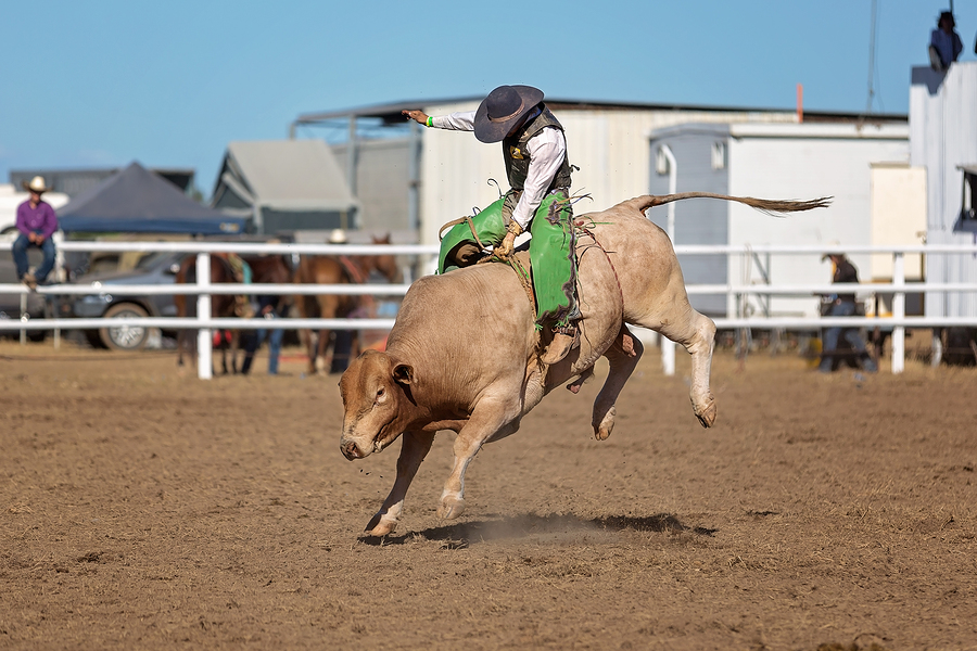 Have fun with a Rodeo in Kitsap County