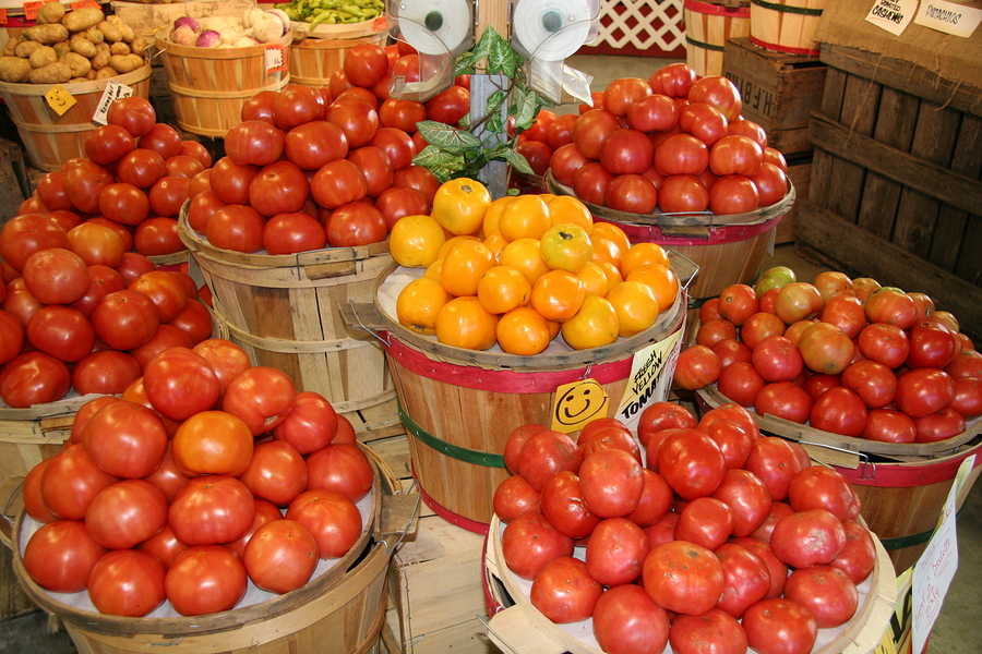 Shop Local Farmers Markets Near Mason County Homes