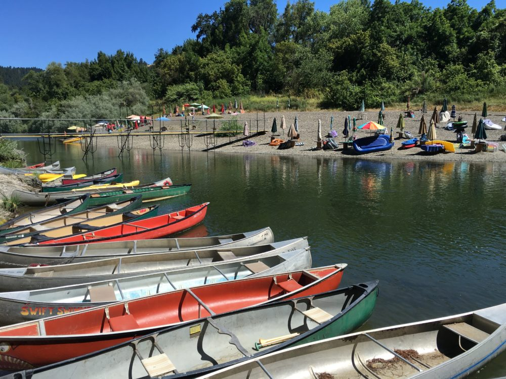 Canoes At Summerhome Park Beach