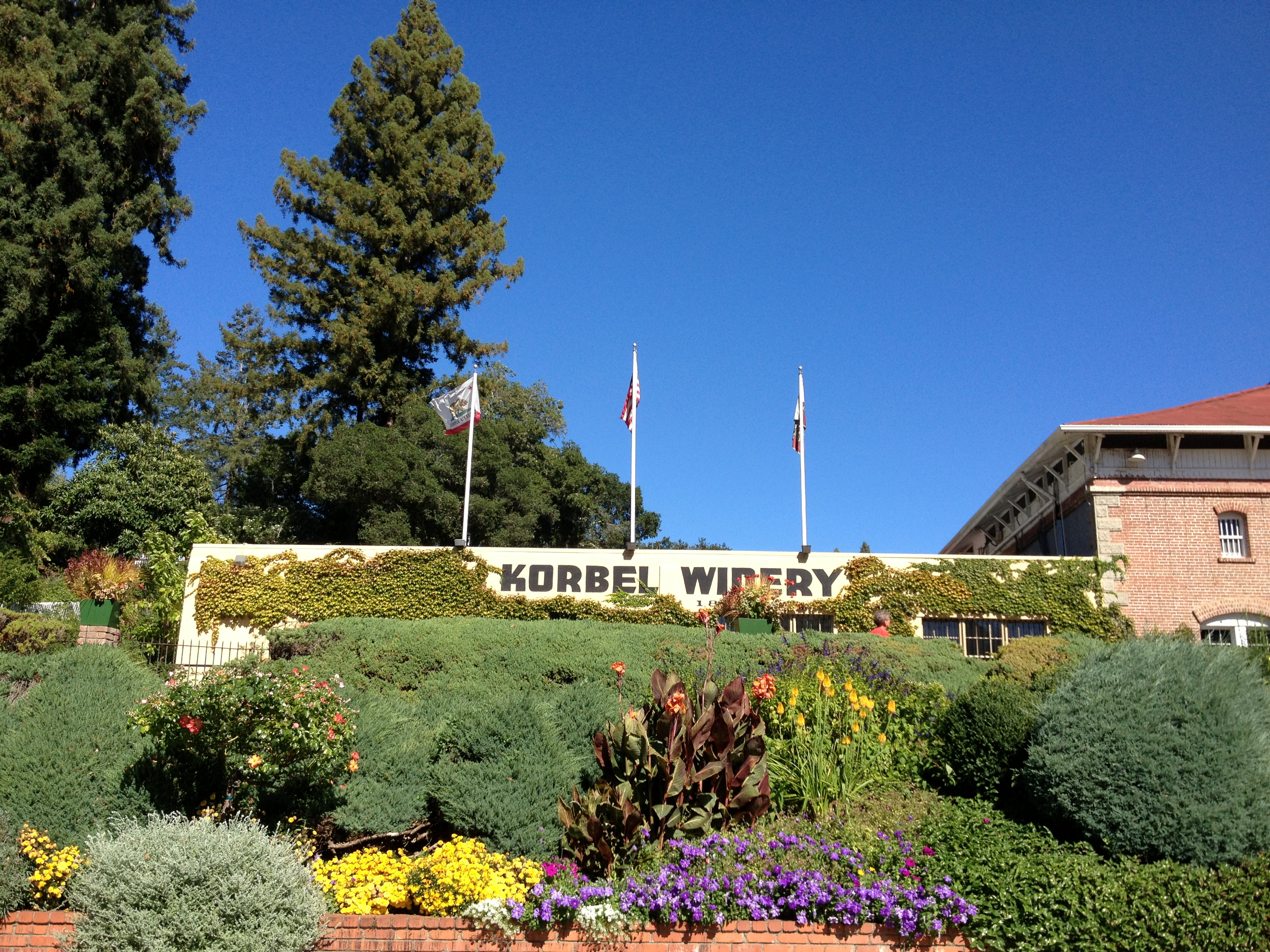 Korbel Vineyards In Guerneville