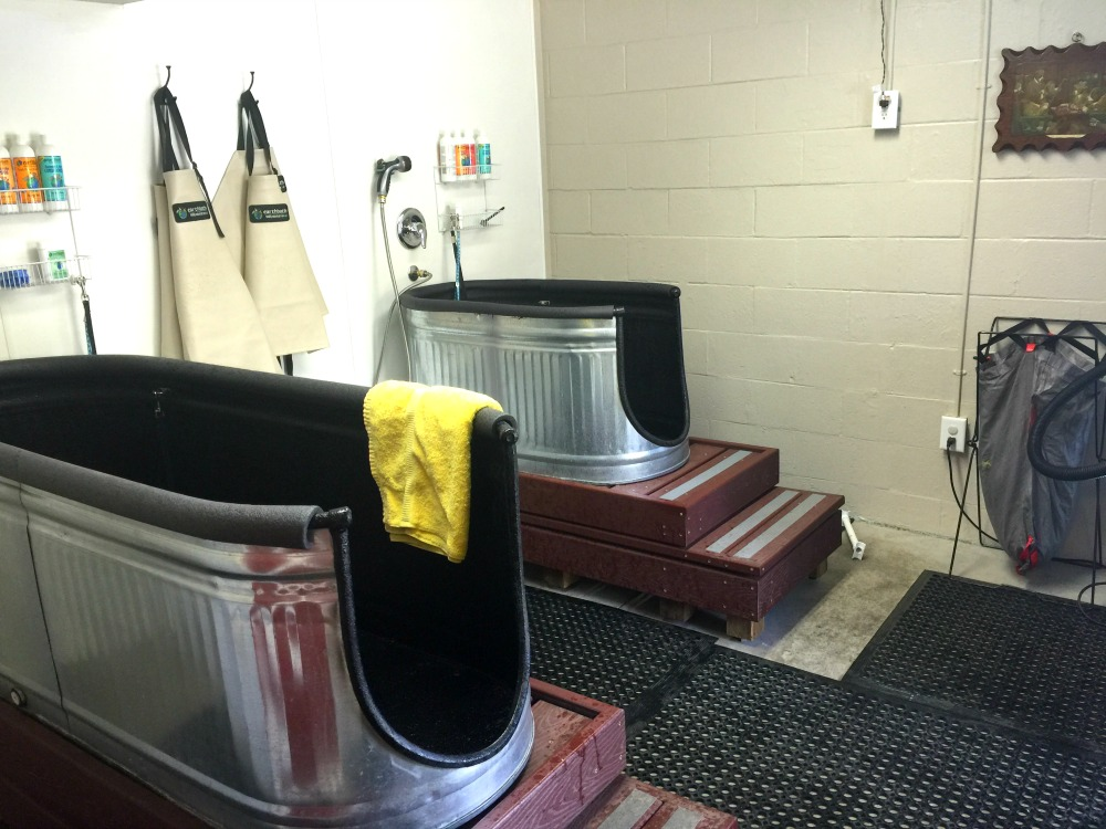 Dog Baths At Barker Pet Supply