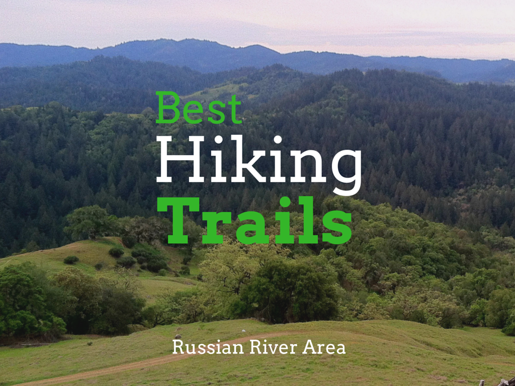 Hiking Trails Russian River