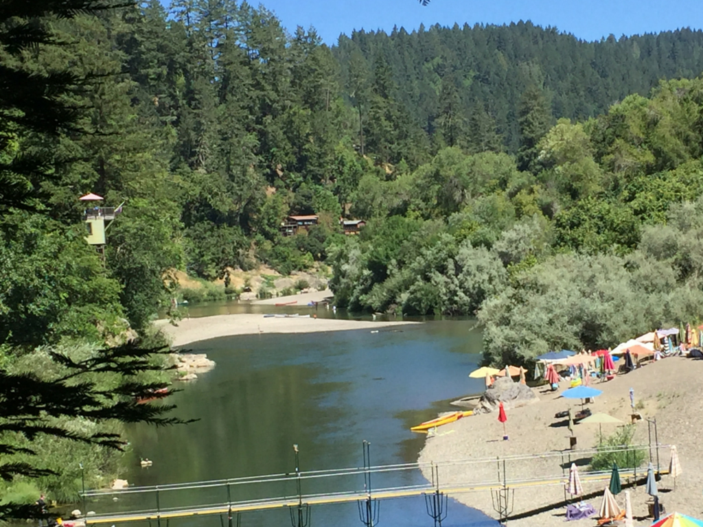 Summerhome Park And The Russian River