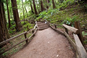 Hike Trails Near Roseville 95661 homes