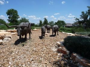 Dr Horton Redbird Ranch