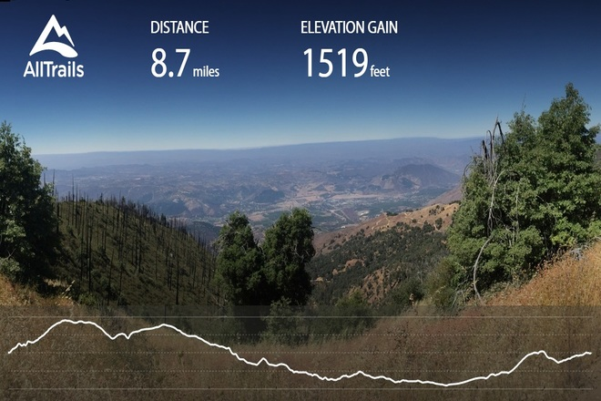 5 Reasons Palomar Mountain San Diego is a Great Place to Live
