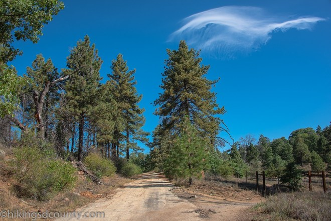 5 Reasons Mount Laguna San Diego is a Great Place to Live