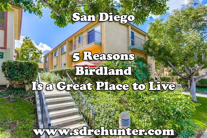 5 Reasons Birdland San Diego is a Great Place to Live 2020   2021