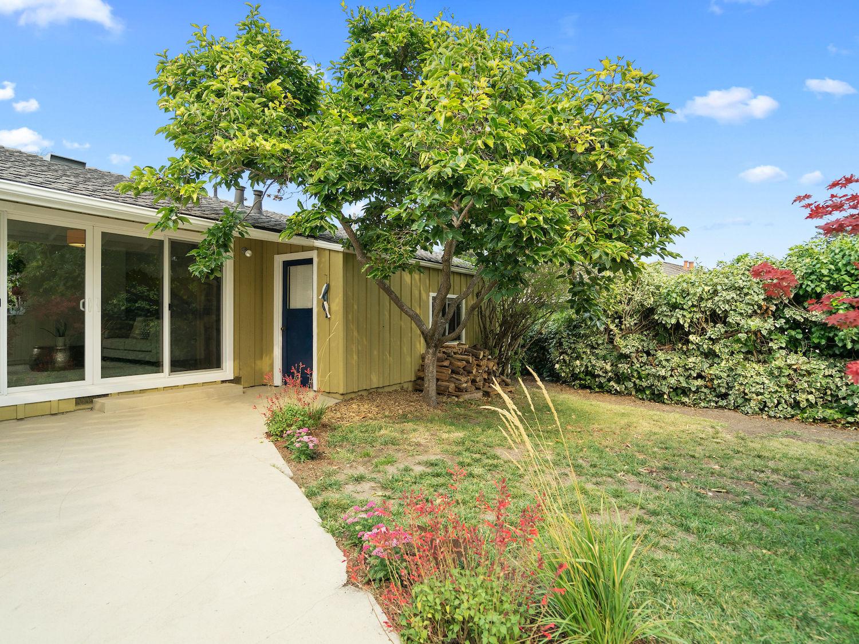 239 ross street santa cruz - backyard