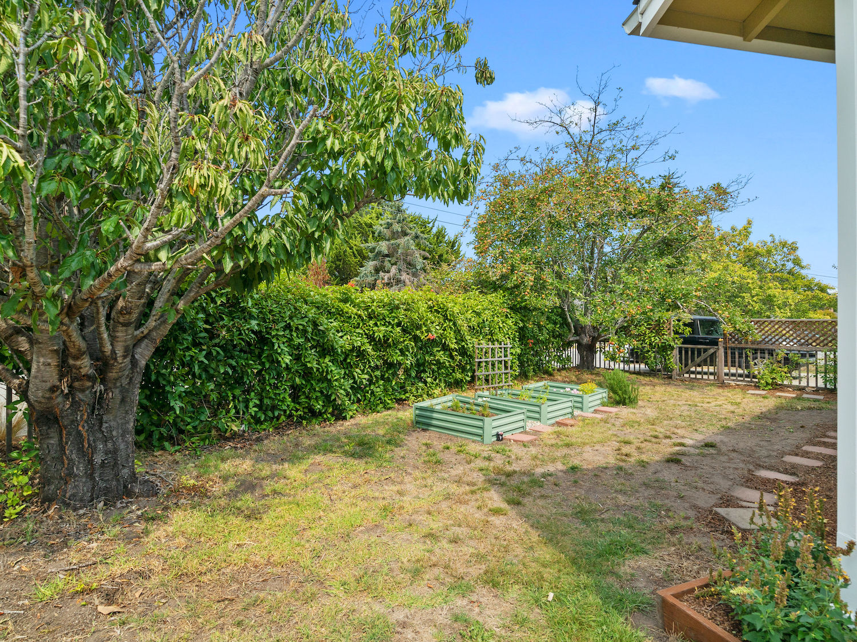 239 ross street santa cruz - garden space