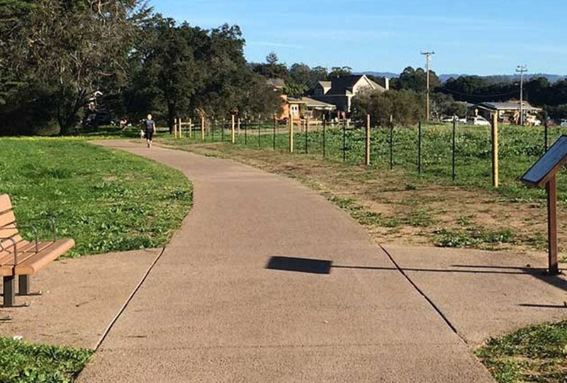 arana gulch trail