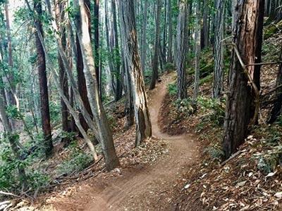 flow trail