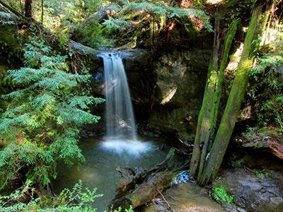 sempervierns falls preserve