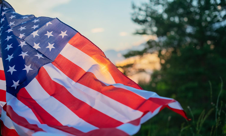 Veteran's Day flag