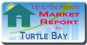 The latest market analysis for Turtle Bay on SIesta Key