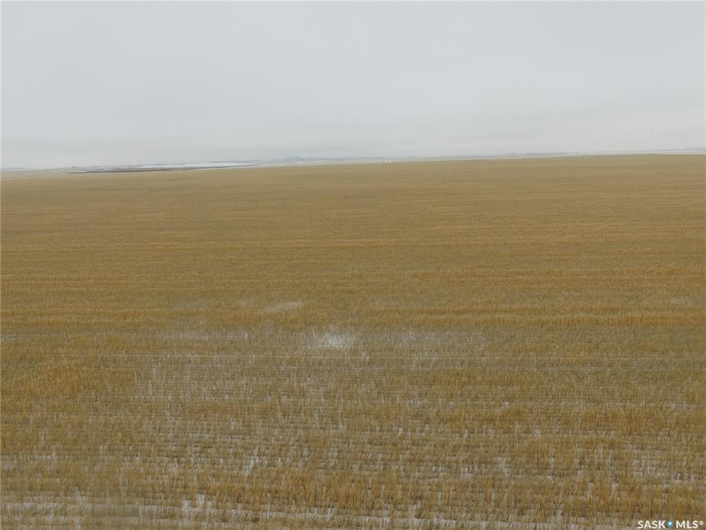 Grain land for sale in SK