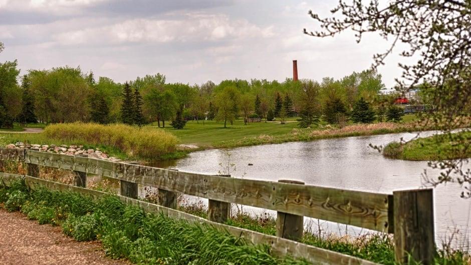 Farm land by Weyburn