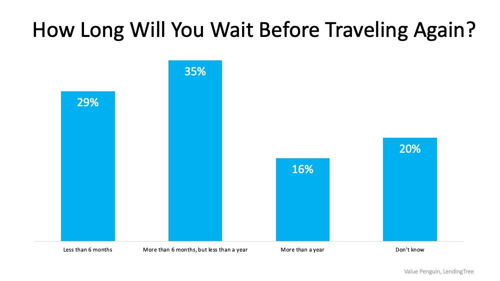 2020 Travel Survey Chart