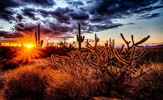 North Scottsdale Arizona