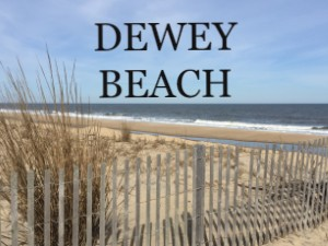 dewey beach real estate search