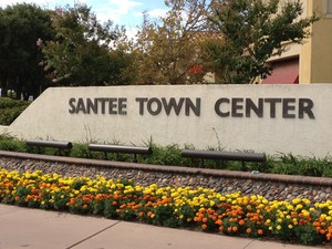 santee real estate