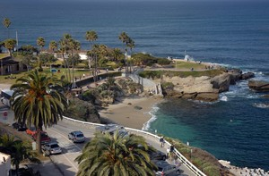 Coastal La Jolla