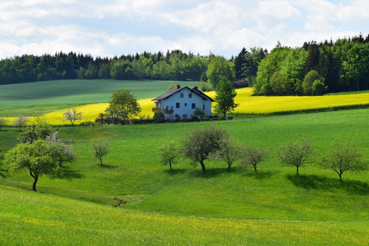 farm house for sale in locust grove, virginia by sean jones