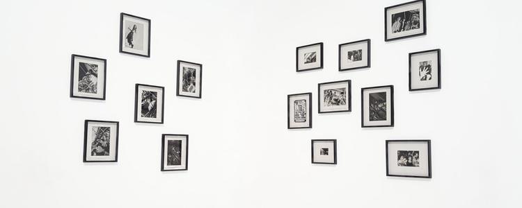 Art Galleries Pine Island