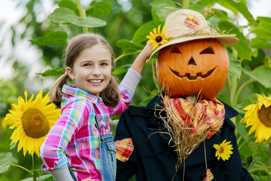 See the scarecrows on historic Columbia SC real estate.
