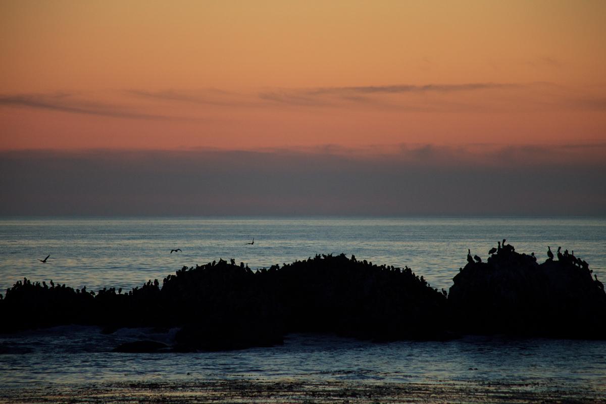 Monterey Peninsula Ocean View Real Estate
