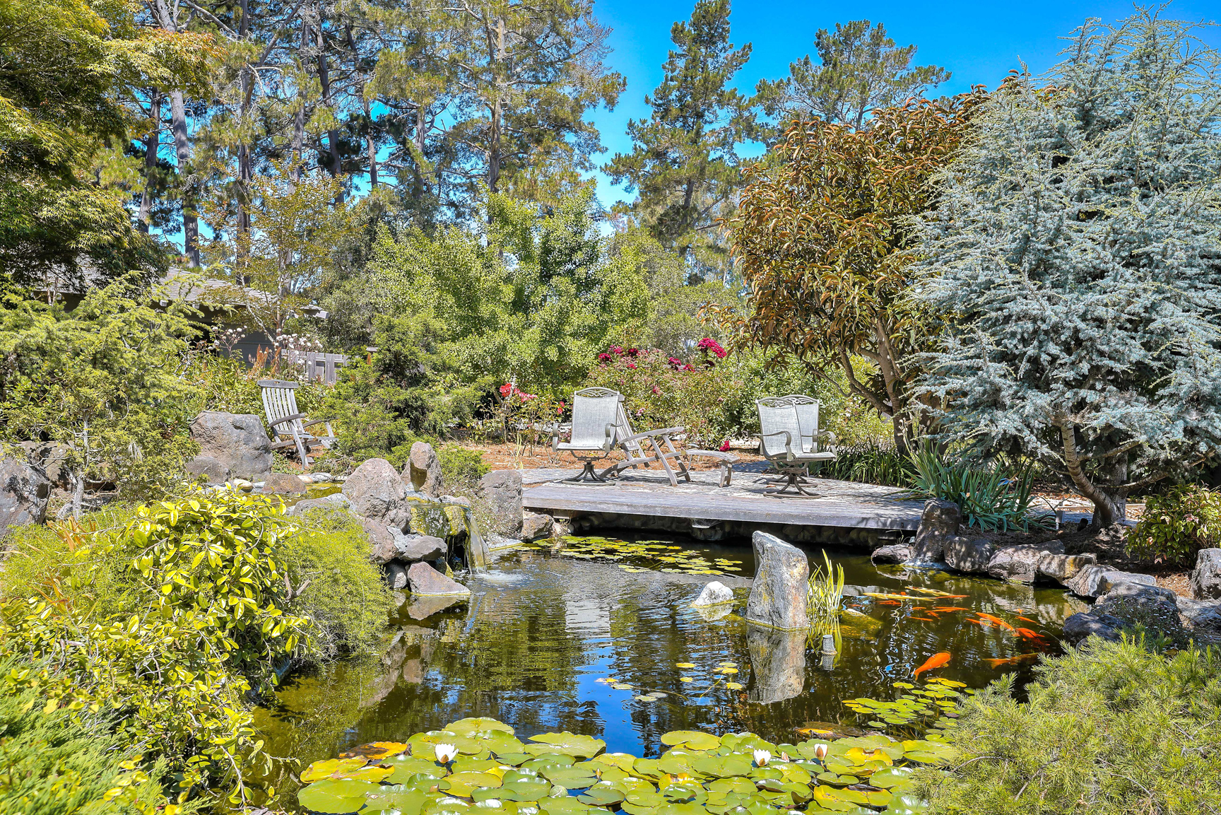Luxury Monterey Estate Koi Pond