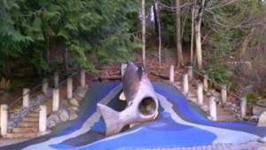 Salmon Slide at Carkeek