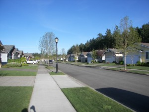 Bainbridge Loop Neighborhood in Jubilee