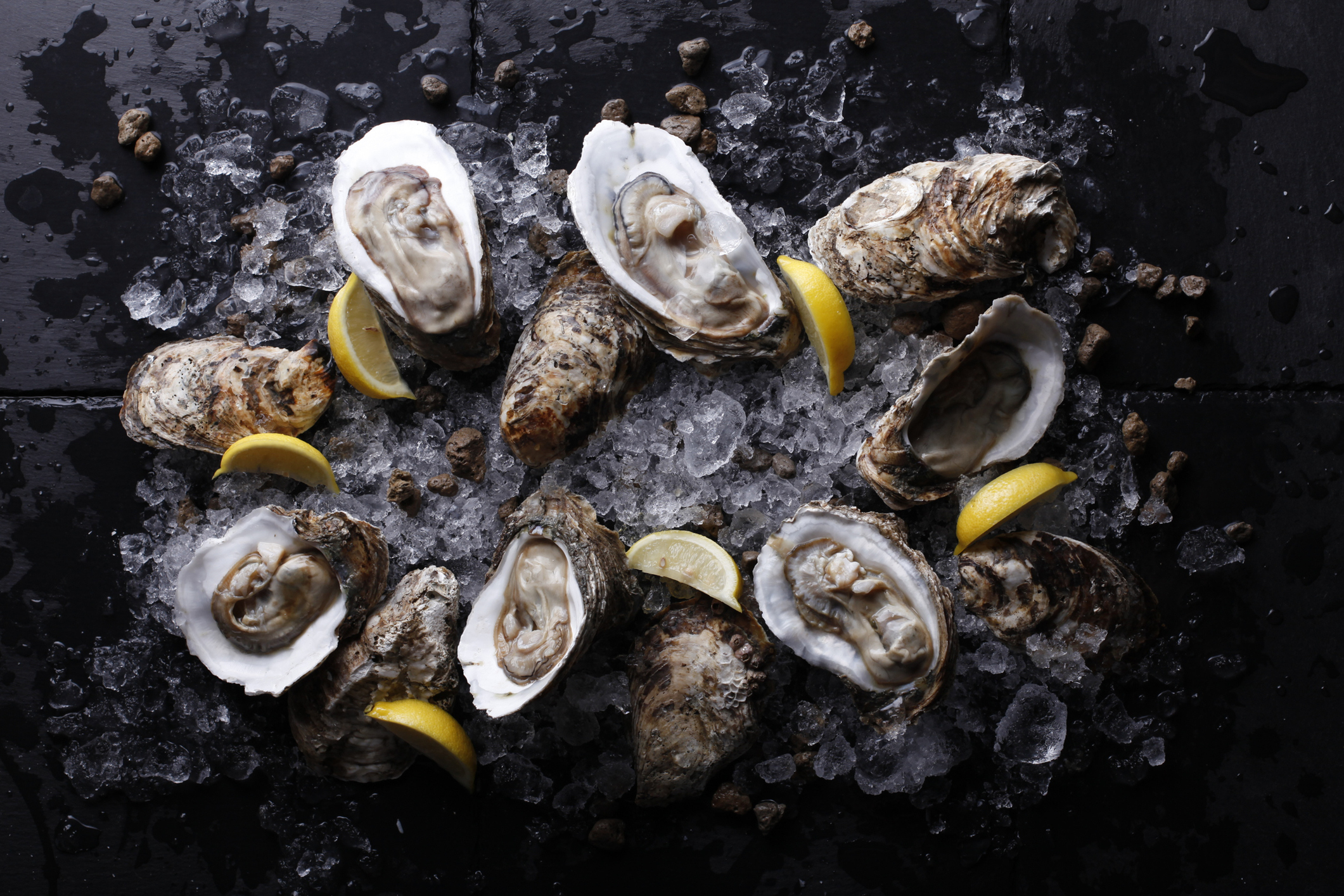 Charleston oyster roasts