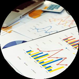 Blossom Hill Real Estate Market Report