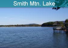 Smith Mountain Lake City Goverment