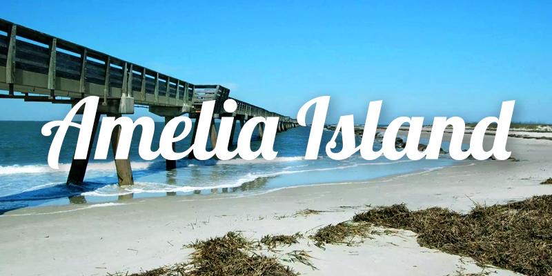 Amelia Island Real Estate Search