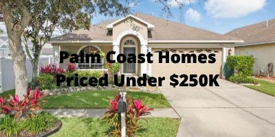 Palm Coast FL Homes Priced Below $250K